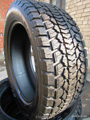 Зимние шины R20 Dunlop - IMG_6487.JPG